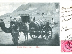 Camel-Water-Cart
