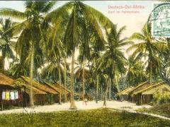 Dorf im Palmenhain