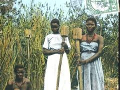 Ovambo-Frauen beim Kornstdampfen