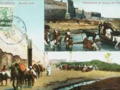 Casablanca Debarquement de chevaux
