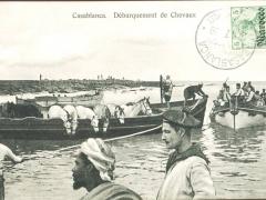Casablanca Debarquerment de Chevaux