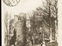 Ruine Montclair bei Mettlach