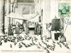 Constantinople Les pigeons de la Mosquee du Sultan Bayazid