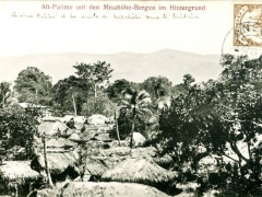 Alt-Palime mit den Misahöhe-Bergen