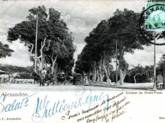 Alexandrie Avenue du Rond Point