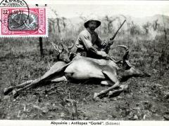 Antilopes Gorke Sidamo