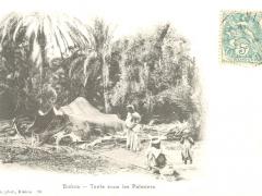 Biskra Tente sous les Palmiers