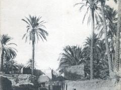 Biskra Une Rue de Sidi Barka