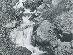 Blida Les Gorges de la Chiffa Ruisseau des Singes