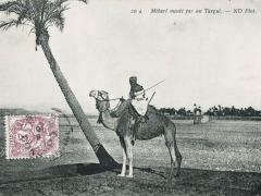 Mebari monte par un Targui