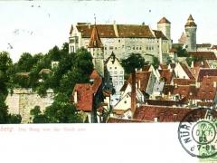 die Burg von der Stadt aus