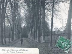 Allee de Hetres au Chateau de Petit Somme