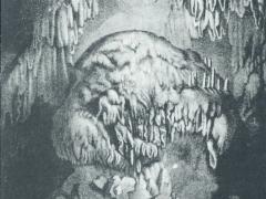 Grotte de Han Le Trophee