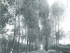 Ploegsteert Dreve et Calvaire de la Rabecque