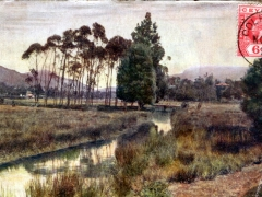 A Trout Stream Nuwara Eliya