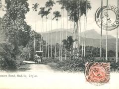 Badulla Passara Road
