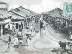 Colombo Steet Scene Pattah