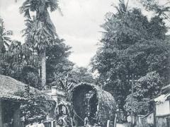 Colombo Street Scene Maradine