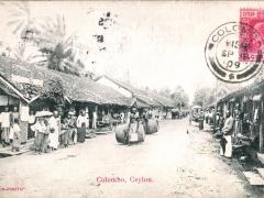 Colombo rue indigene