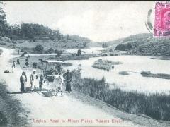 Road to Moon Plains Nuwara Eliya