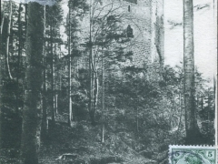 Wangenburg Ruine Blick aus dem Walde