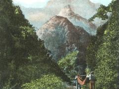 Madeira Corral Grande