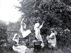 A Merry Company of Rosy Village Girls