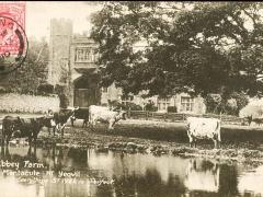 Abbey Farm Montacute