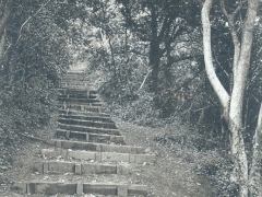 Barry Porthkerry Park Goldn Stairs