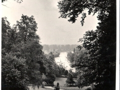 Richmond on Thames View from th Terarace Gardens