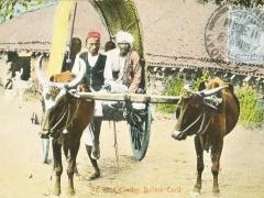 Indien Bullock Cart