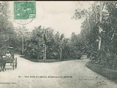 Saigon une Allee du Jardin Botanique de Saigon