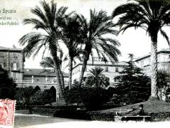 La Spezia Palmizi nei Giardini Pubblici