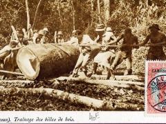 Trainage des billes de bois