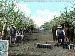 Nova Scotia Orchad Scene Spraying and Fertilizing