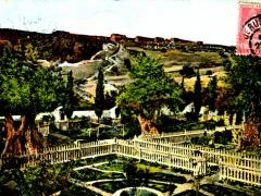 Jerusalem-Garden-de-Gethsemanie