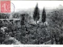 Palestine Vue generale du Jardin de Gethsemani