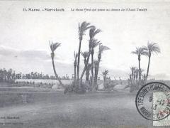 Marrakech Le vieux Pont qui passe au dessus de l'Qued Tensift