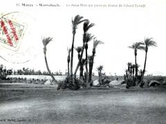 Marrakech Le vieux Pont qui passe au dessus de l'Oued Tensift