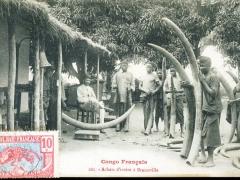 Achats d'ivoire a Brazzaville