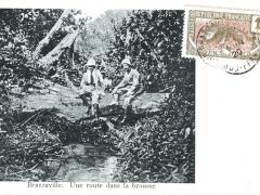 Brazzaville Une route dans la brousse