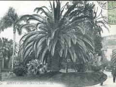 Dans les Jardins