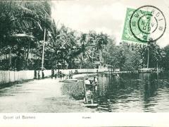 Kween Borneo