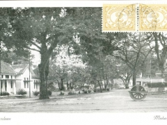 Makassar Coenenlaan