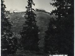 Weg zur Schmittenhöhe