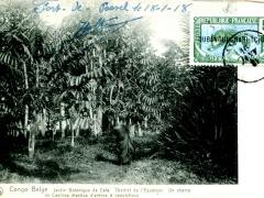 Eala-Jardin-Botanique