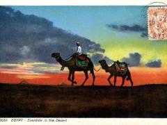 Eventide in the Desert