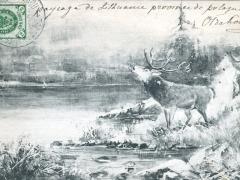 Hirsch Künstlerkarte