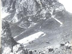 Alpe de Lovenex et la Dent de Miette
