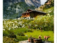 Hinterstockhütte und Stockhorn
